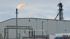 Biofuels Grow Up