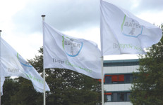 Bayer CropScience flags