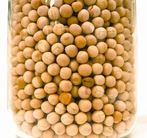 Biotech Seed