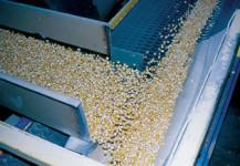 Seed Conveyor
