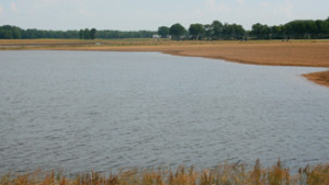 USDA Program Improves Water Quality In Mississippi River Basin
