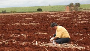 New Soil Testing Kit Designed To Help Farmers In Third World Countries
