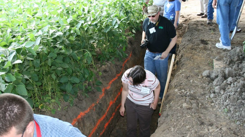 Conservation Tillage Conference To Focus On Cover Crops, Nutrient Management
