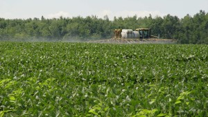 Adjuvants, Specialty Inputs Gain Ground