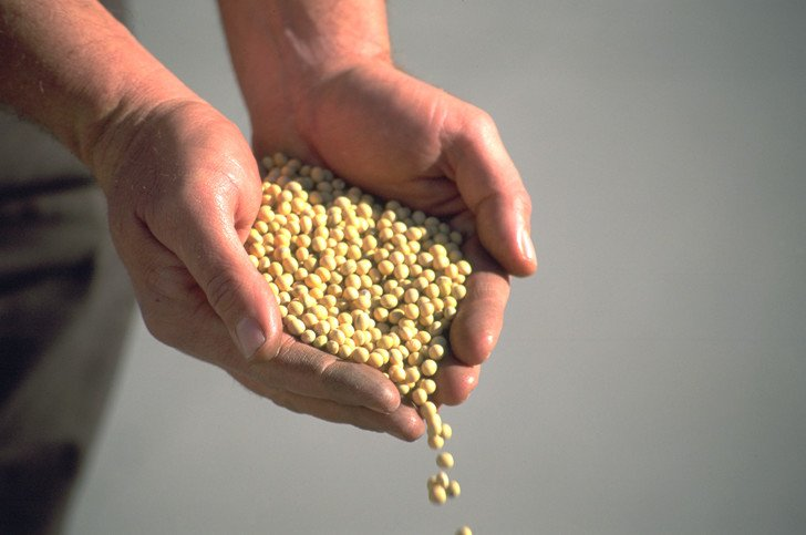 The Growing Importance Of Seed Care
