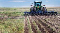Strip-till fertilizer application method soybeans