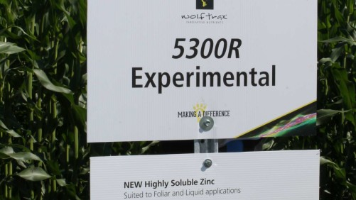Wolf Trax's 5300R is an experimental zinc designed for use as a foliar or in liquid applications.