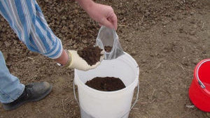 How To Sample Manure For Nutrient Analysis