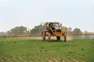 1264 RoGator Spraying Corn