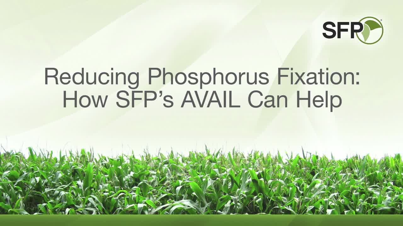 Reducing Phosphorus Fixation: How SFP's AVAIL Can Help [Advertiser Content]