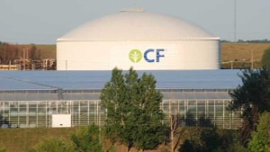 WSJ: Cf Industries Exploring Merger With Dutch Chemical Company