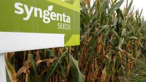 Syngenta