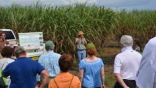 CTIC 2014 Everglades