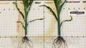 West Central Offers Performance Guarantee On Redline Starter Fertilizer