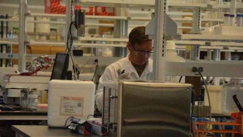 Verdesian Los Alamos Laboratory