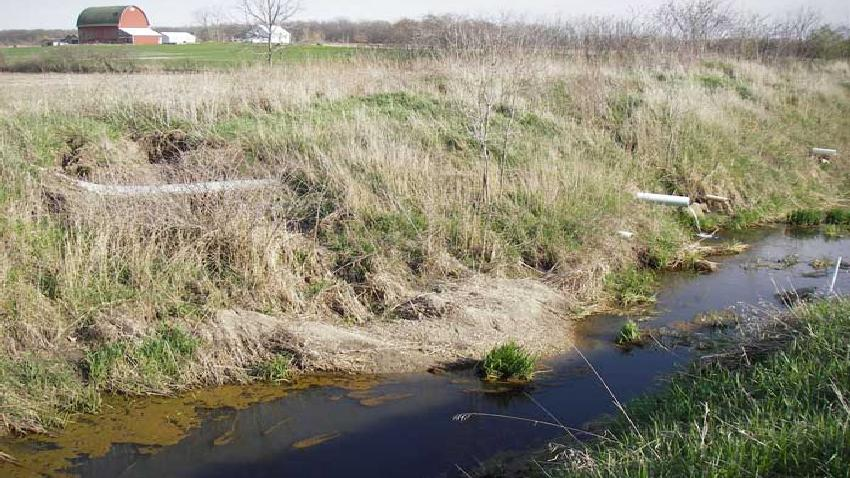 4R Management to Reduce Phosphorus Losses from Agricultural Subsurface Drainage