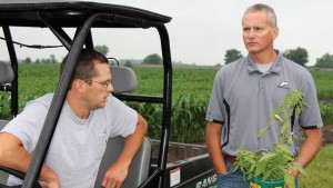 Dicamba-Resistant Pigweed Field Trial Announced