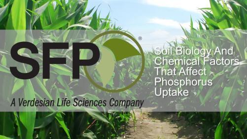 Soil Biology And Chemical Factors That Affect Phosphorus Uptake [sponsor content]