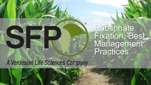 Phosphate Fixation: Best Management Practices [sponsor content]