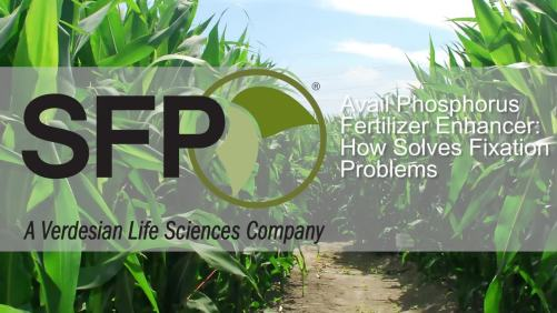 Avail Phosphorus Fertilizer Enhancer: How It Works [sponsor content]