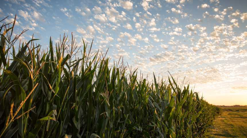 Vilsack Announces Additional Support For Iowa Water Quality Efforts