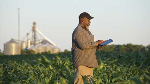Farmer on tablet