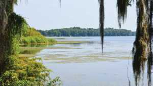 Florida Waters Making Serious Progress