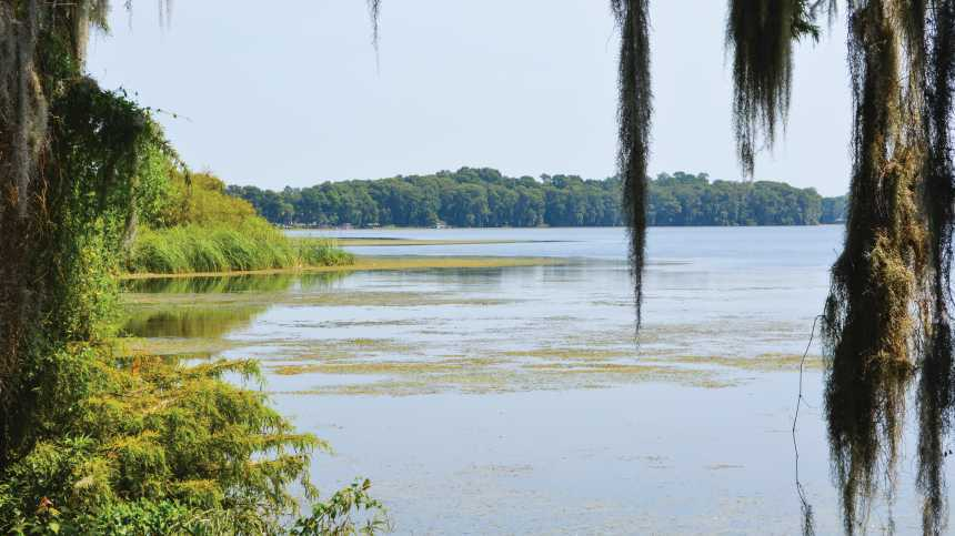 Florida Waters Making Serious Progress