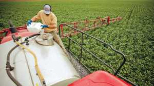 Adjuvants Trending Up For Fighting Weed Resistance