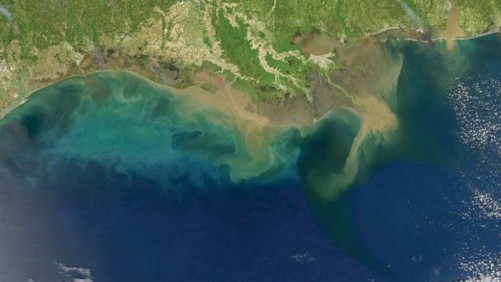 Hypoxic zone Gulf of Mexico