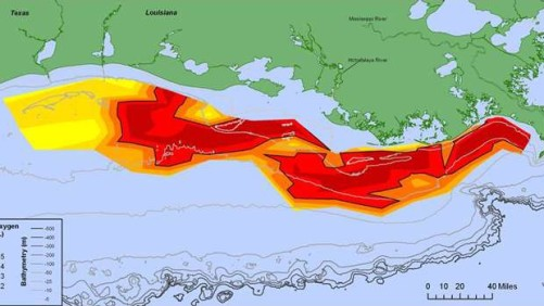 Hypoxic Zone diagram