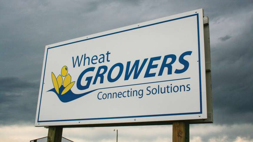 Wheat Growers