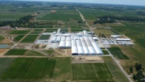 Beck's Acquires Former Syngenta Facility In Paris, IL