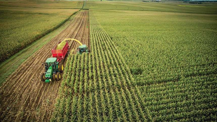 Landus Coop: Test Plot Results Show 6x ROI on SDS Seed Treatments