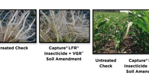 FMC Capture LFR Insecticide VGR Soil Amendment