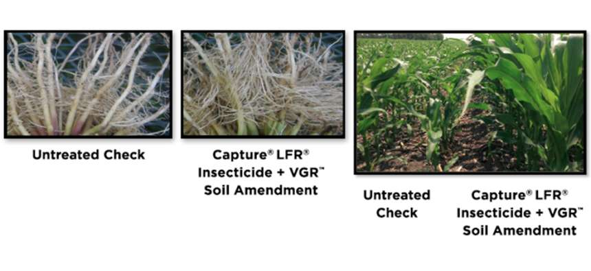 FMC Capture LFR Insecticide VGR Soil Amendment