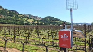 Tule Technologies: Monitoring Water Stress Can Unlock Potential