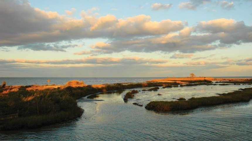 Hints Of The Chesapeake Bay's Brighter Future