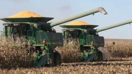 Corn Harvest. Photo credit: Novozymes