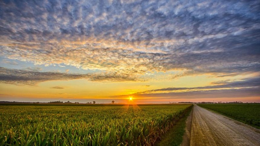 Report: U.S. Farmland Values On Average Continue Gradual Decline