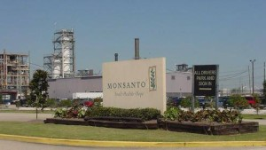 Monsanto 'Dicamba Summit' Reportedly Causing Consternation in Ag Science Community