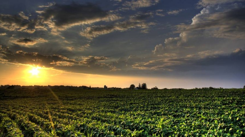 Picking Partners in the Crop Protection Market