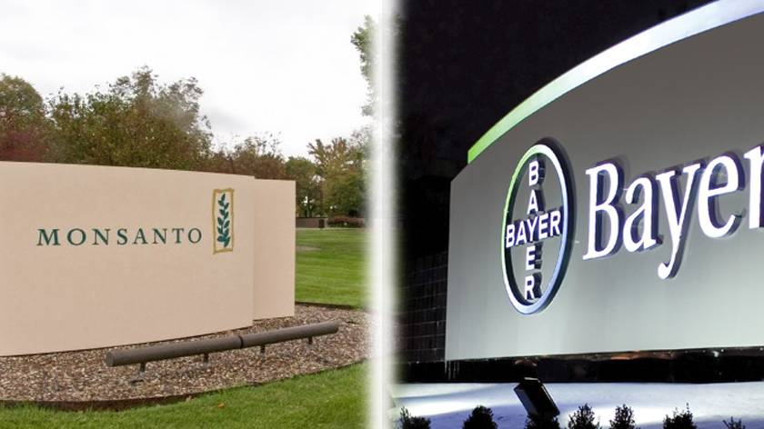 Bayer Monsanto