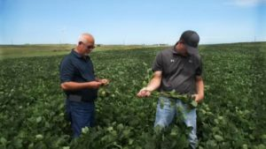 Certified Crop Adviser Program: Still Thriving After 25 Years