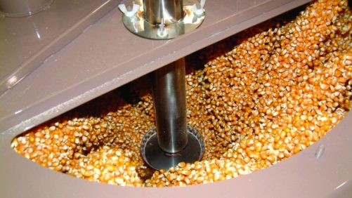 Corn seed treatment