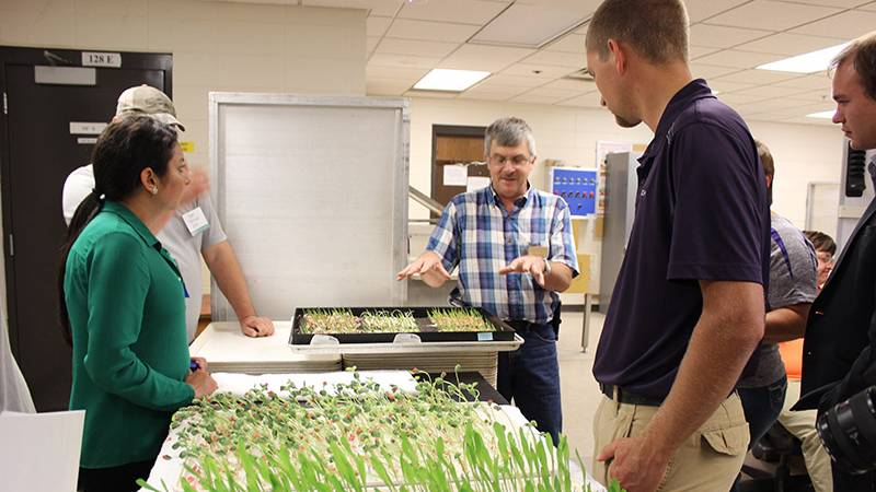 Iowa State Celebrates 10 Years of Online Seed Education