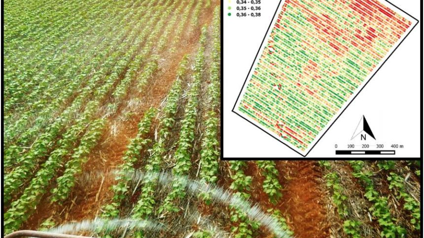 Why Are Service Providers Slow to Adopt Crop Sensors for Nitrogen Management?
