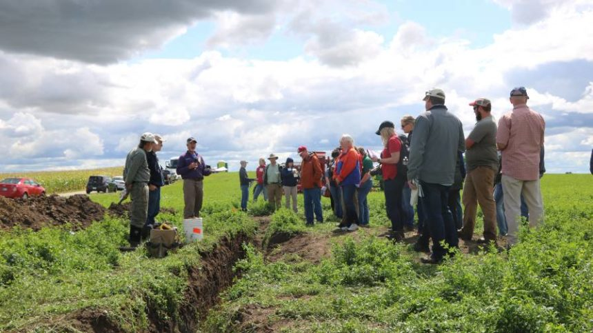 Service Providers Best Positioned to Move Nutrient Stewardship Needle